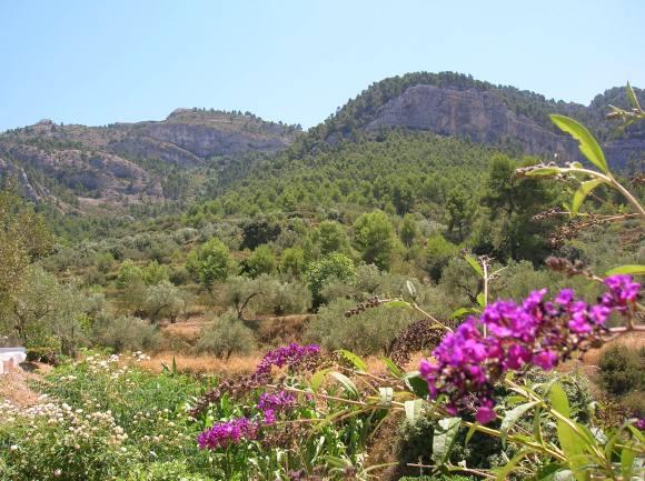 Sierra de Mariola.