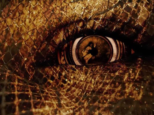 demented_eye_by_nicr0